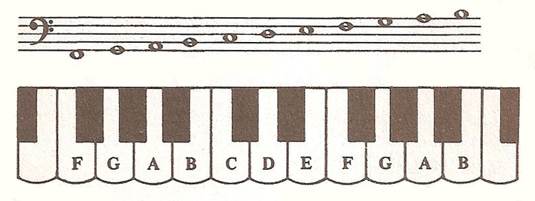 notes on bass stave